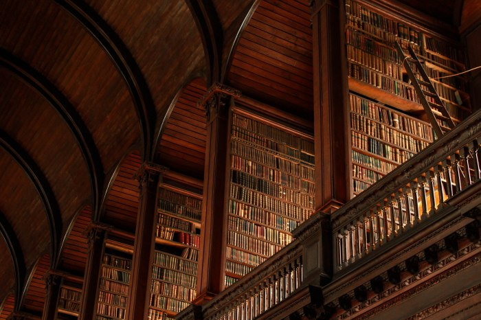 The Trinity College Library Long Room is a must-see.